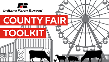 County Fair Toolkit_Ferris Wheel Barn Farm Animals