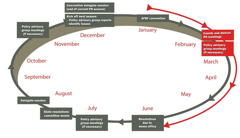 Policy Calendar Graphic